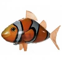 Ferngesteuerter fliegender Clownfisch ..