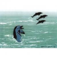 Airbrush Schablonen Spielende Delphine