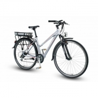 TOTEM E-City Bike 250W, fertig montiert
